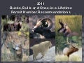 2011 Bucks, Bulls and Once-in-a-Lifetime Permit Number Recommendations, May 4