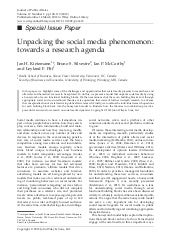 Unpacking the social media phenomen...
