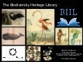 The Biodiversity Heritage Library