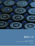 Radius May 2013 Small Business Report