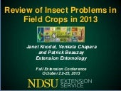 2013 insect update fall ext conf ja...