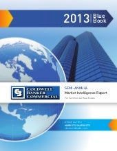 2013 Mid Year Blue Book