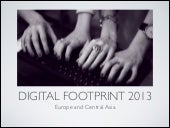 2013 digital footprint: UNDP in Europe and Central Asia