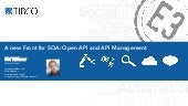 Open API and API Management - Introduction and Comparison of Products: TIBCO API Exchange, IBM, Apigee, 3scale, WSO2, MuleSoft, Mashery, Layer 7, Vordel