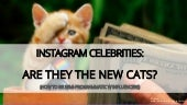 Instagram Celebrities: are they the new cats? - Targetsummit Berlin 2015
