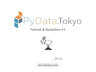PyData Tokyo Tutorial & Hackathon #1