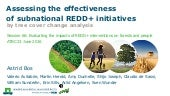 Assessing the effectiveness of subnational REDD+ initiatives by tree cover change analysis
