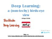 Deep Learning: a birds eye view
