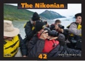 The Nikonian eZine 42