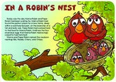 213 in a robin's nest