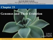21 genomes and their evolution