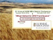 World Wheat Outlook