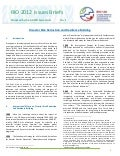 Issues Brief 8 - Reducing Disaster Risk and Building Resilience, UN-DESA
