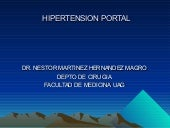 28. hipertension portal