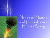 2 Planes of Nature And Principles I...