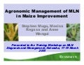 MLN Workshop: Agronomic management of maize lethal necrosis -- S Mugo, et al