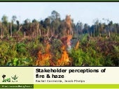 Stakeholder Perceptions of Fire and Haze