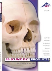 3 b scientific brochure