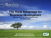 USDA Rural Advantage for Biz Develo...