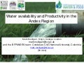 Water availability and Productivity in the Andes Region- long version