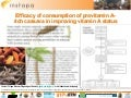 Efficacy of consumption of provitamin A-rich cassava