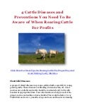 4 Cattle Diseases and Preventions You Need To Be Aware of When Rearing Cattle For Profits