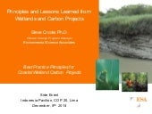 Principles and Lessons Learned from Wetlands and Carbon Projects