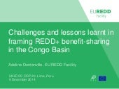 Challenges and lessons learnt in framing REDD+ benefit-sharing in the Congo Basin