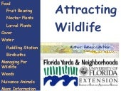 FYN Principle #5 - Attract Wildlife
