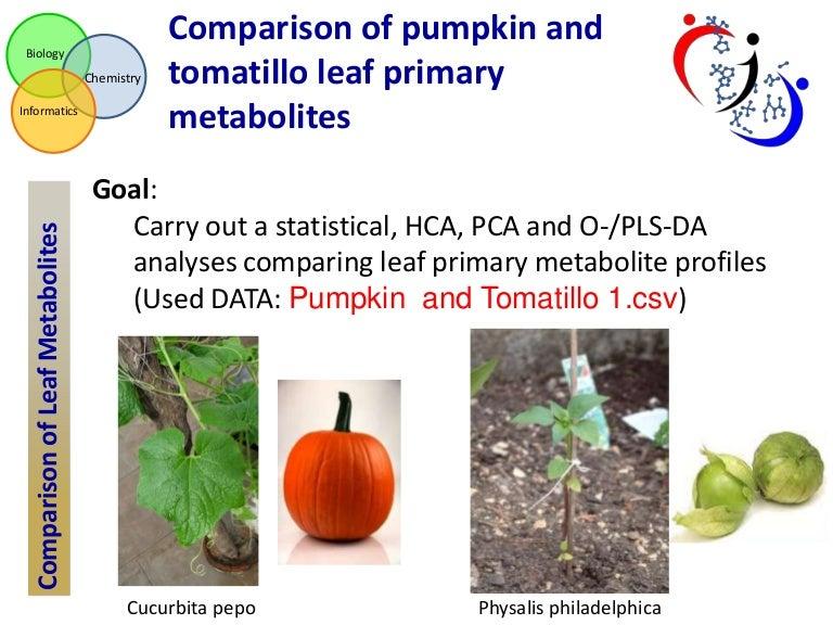 Case study data analysis