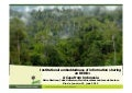 Institutional embeddedness of information sharing on REDD+: a case from Indonesia