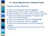 6. Sex Cells & Fertilisation