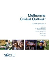 Methionine Global Outlook: The Next...