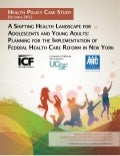 A Shifting Health Landscape for Adolescents and Young Adults: Planning for the Implementation of Federal Health Care Reform in New York