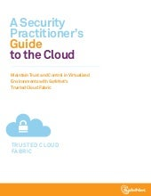 A Security Practitioner's Guide to ...