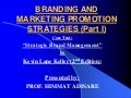 86757580 branding-and-marketing-promotion-strategies