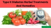 Type II Diabetes Herbal Treatments ...