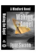 Waking the Angel: A Mindlord Novel by Igor Swann