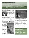 Winter 2006 Nevada Wilderness Project Newsletter
