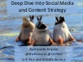 Deep Dive Into Social Media and Content Strategy