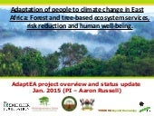 Adaptation of people to climate change in East Africa: Forest and tree-based ecosystem services, risk reduction and human well-being