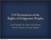UN Declaration of the Rights of Ind...