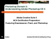 Aca photoshop domain 3