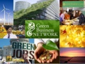 Green Cash for Green Business