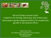African Chicken Genetic Gains: A platform for testing, delivering, and continuously improving tropically-adapted chickens for productivity growth in sub-Saharan Africa