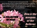 A collection of duas (supplications)