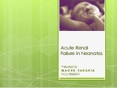 Acute Renal Failure in Neonates