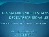 Des salaries mobiles dans des entreprises agiles V20110222 MICHEL SALOFF COSTE