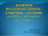 Adhesion molecules in skin  seminar...