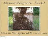 Fleet Beekeepers Advanced beeginner...